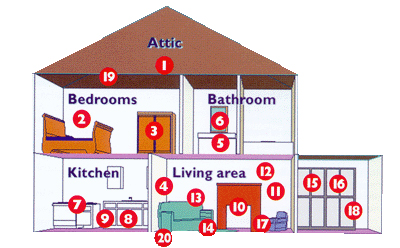 Airborne Contaminants in the Home